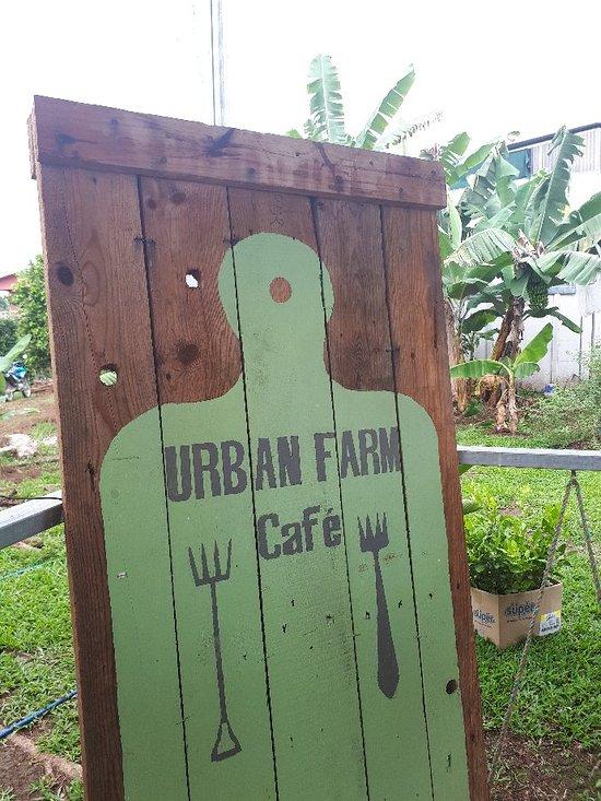 Urban Farm Cafe San Isidro.jpg
