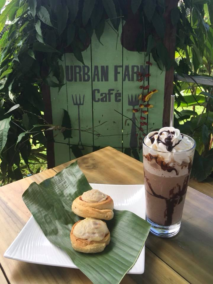 Urban Farm Cafe.jpg