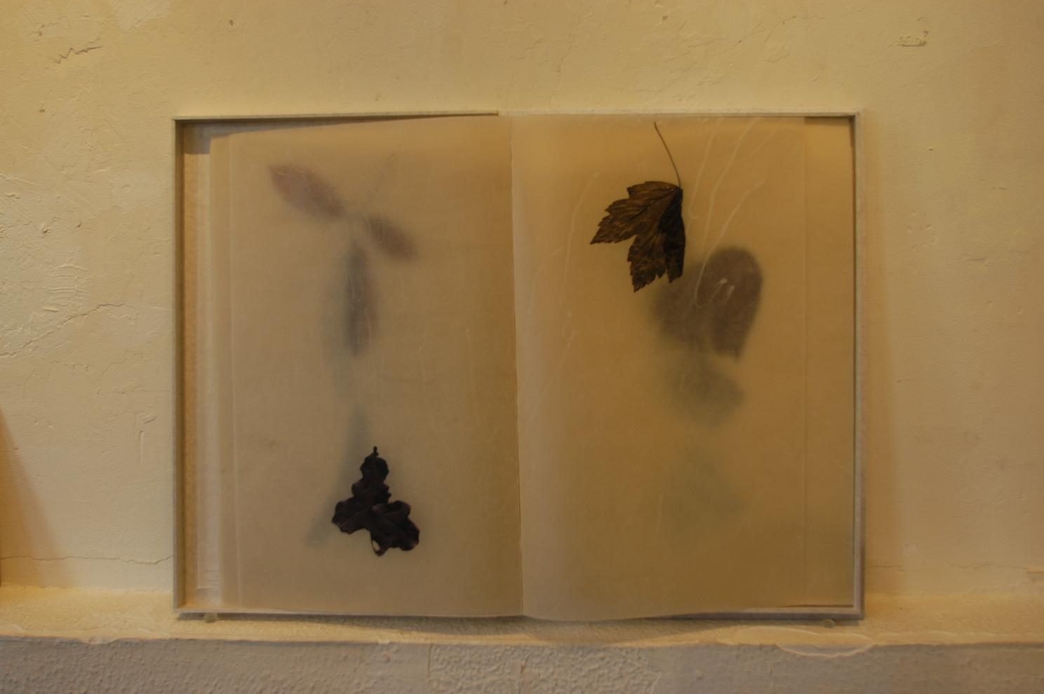ADACHI Ryoko - book art, paper