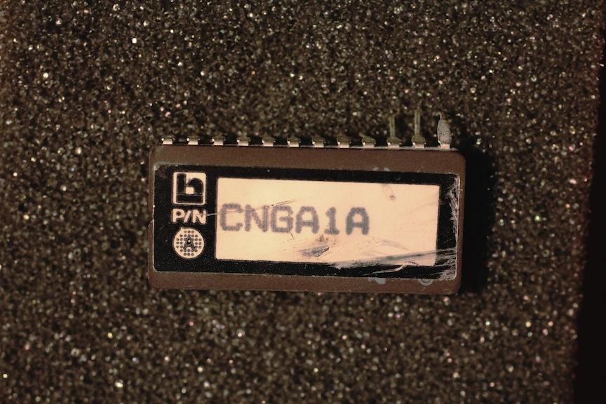 17-chips-6-img_4502.jpg