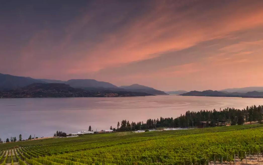 Kelowna's Wine Trails - Kelowna BC - The-Royal Hotell activities.png