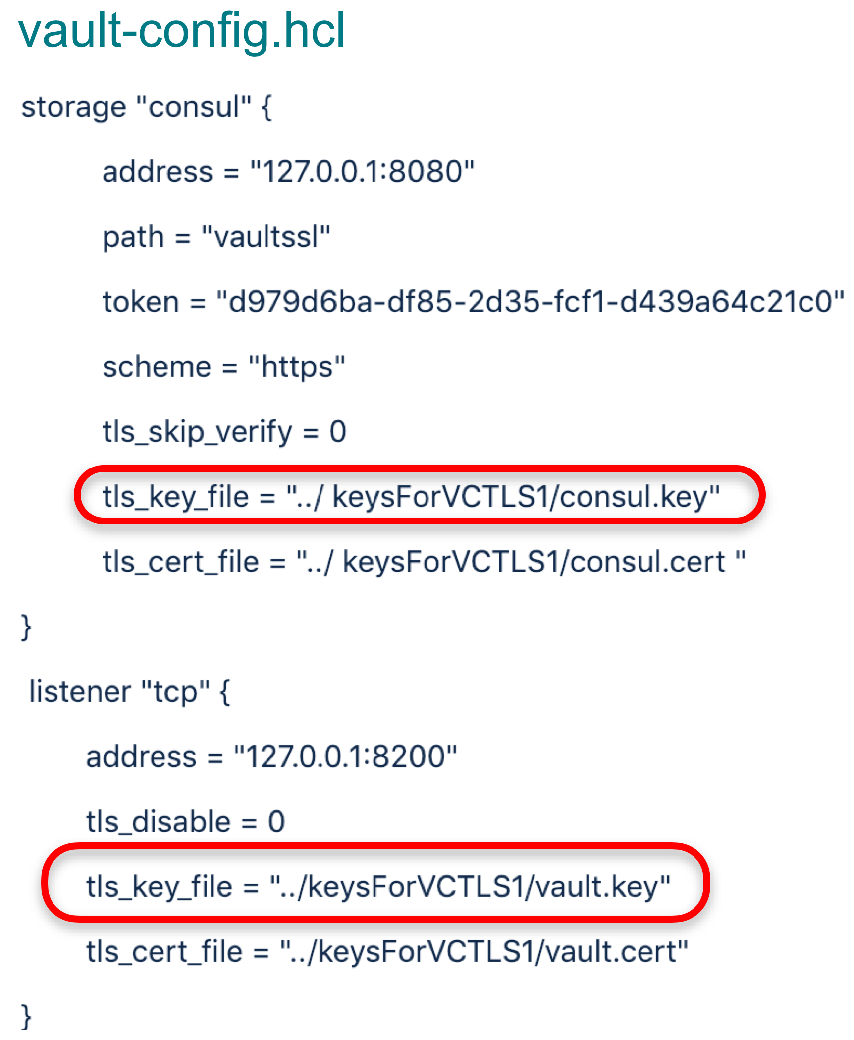The TLS private key is stored on the host. Obtaining it enables an attacker to spin up a malicious Vault server instance, or a service with a similar API, and convince clients to connect and send their secrets to the attacker.