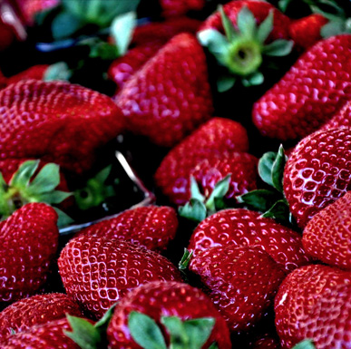 Growing sweeter, healthier strawberries -