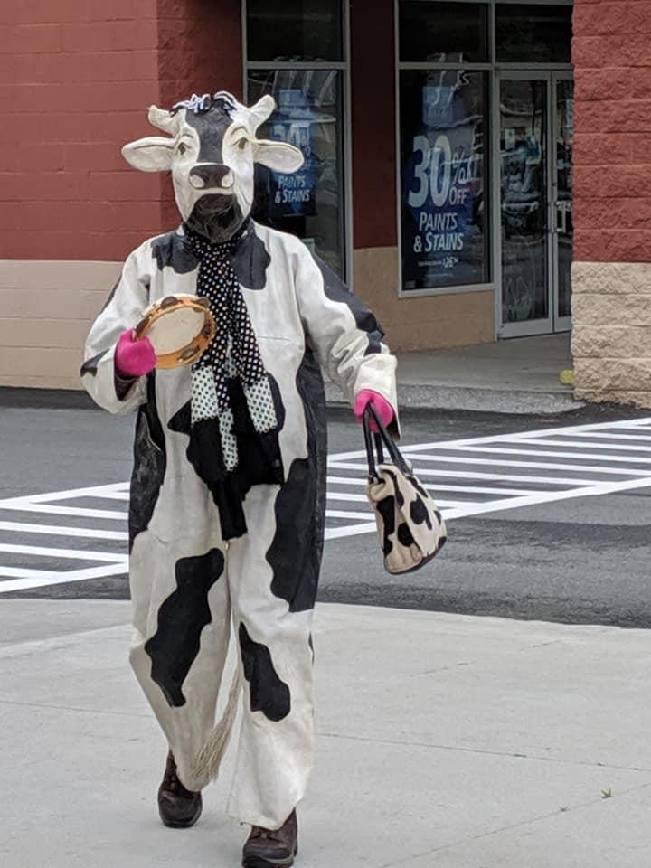 Barabara cow.jpg