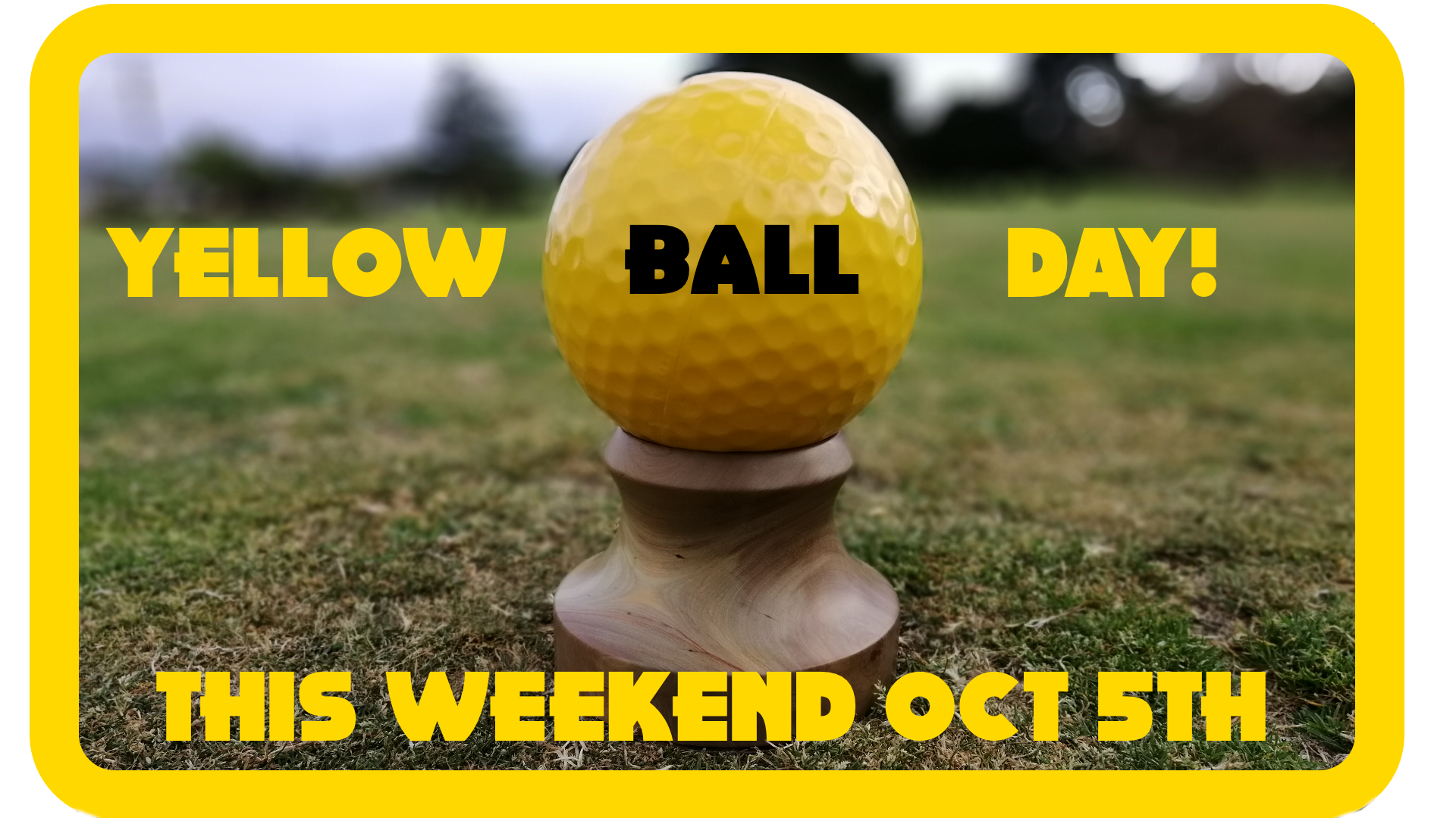 Yellow Ball Day.png