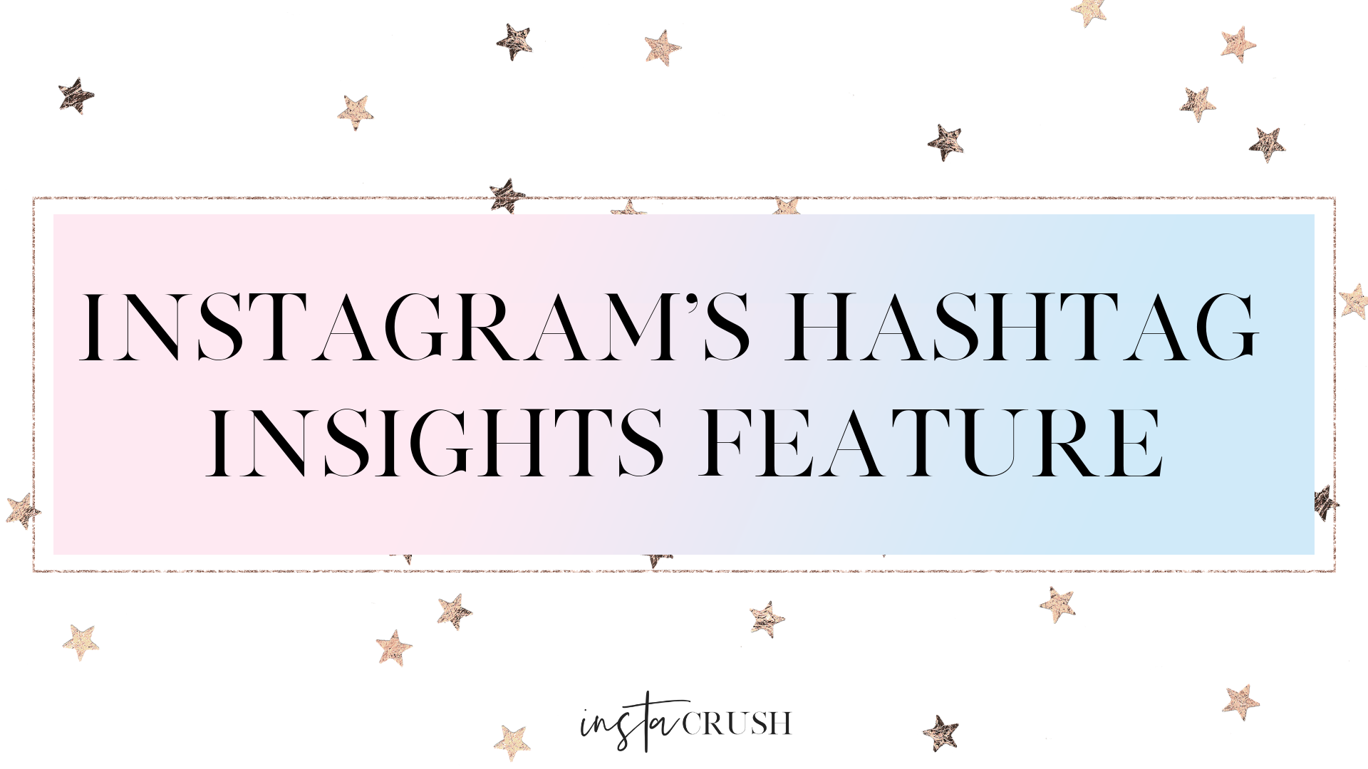 instagram's hashtag insights feature