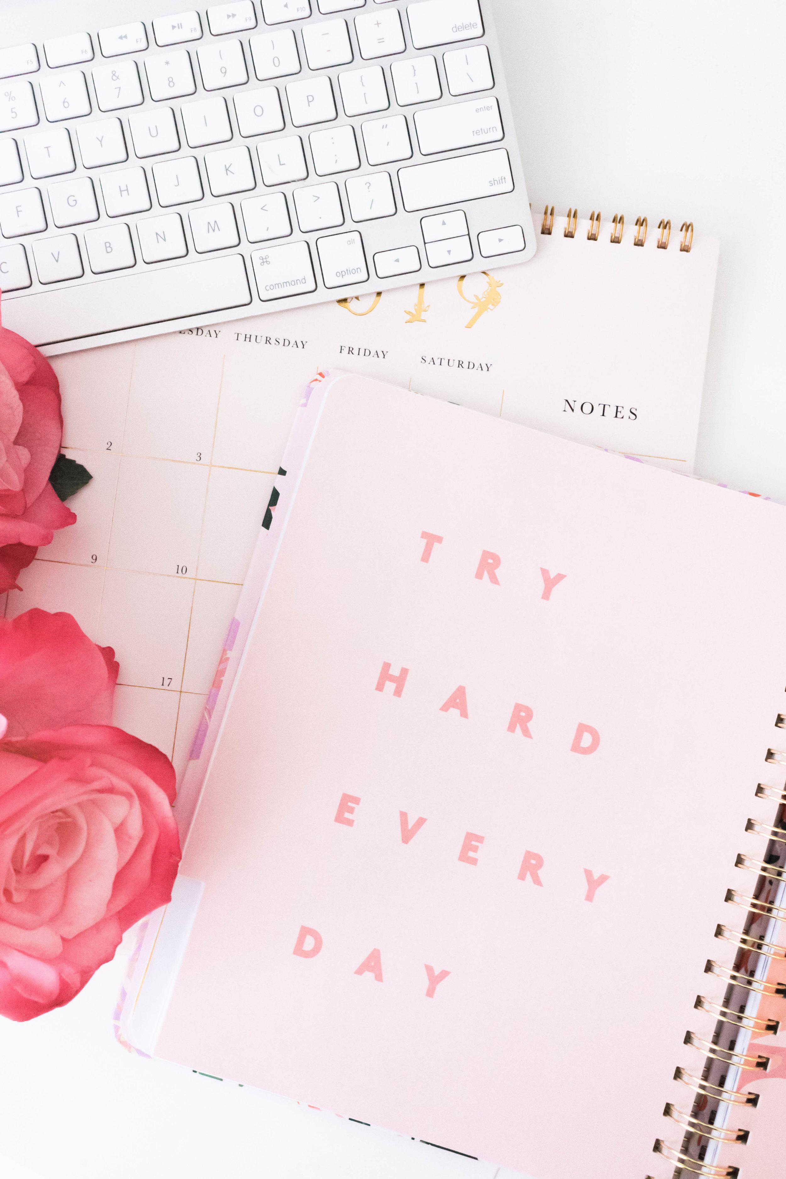 try hard.jpg