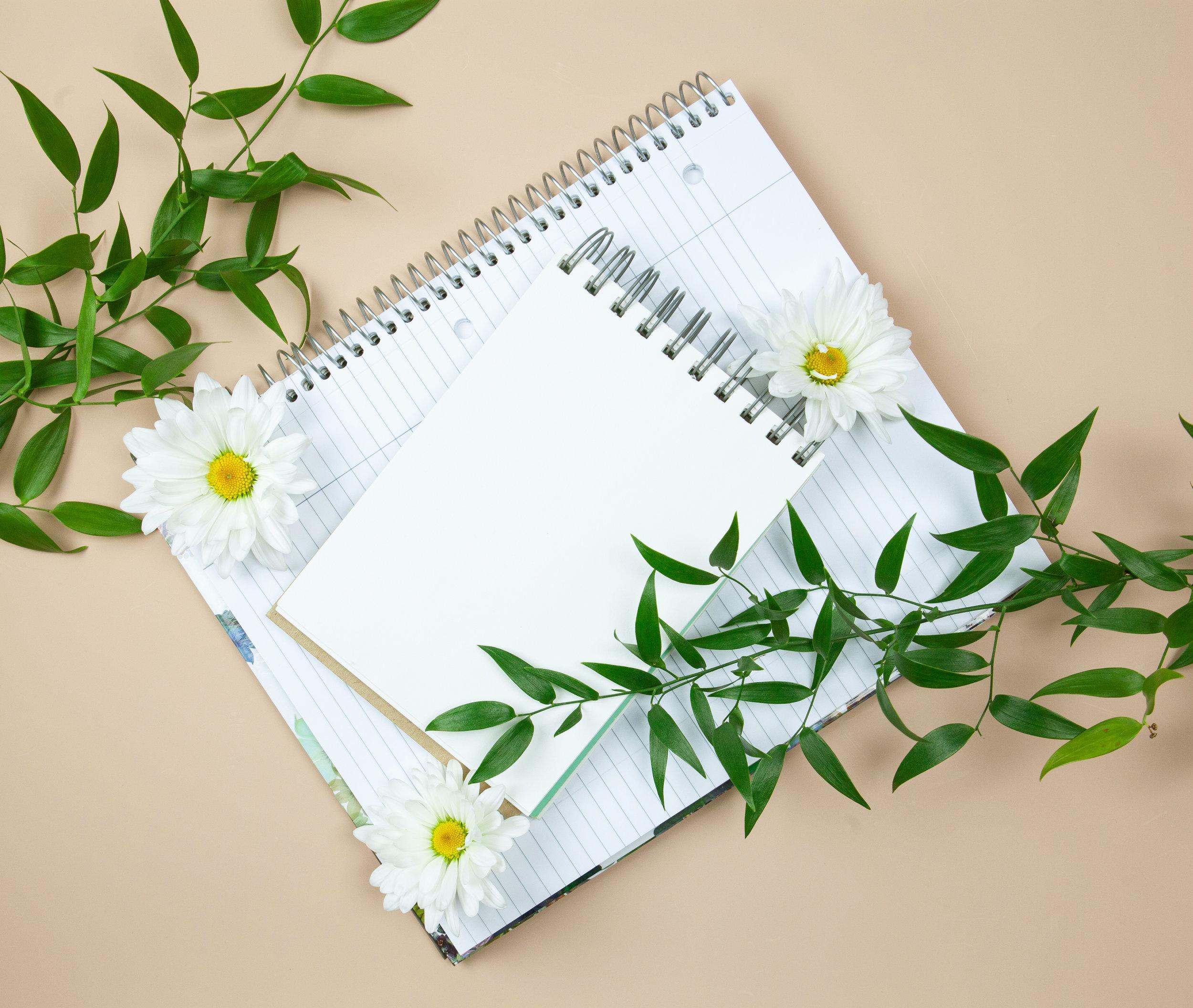 daisy notepad 2.jpg