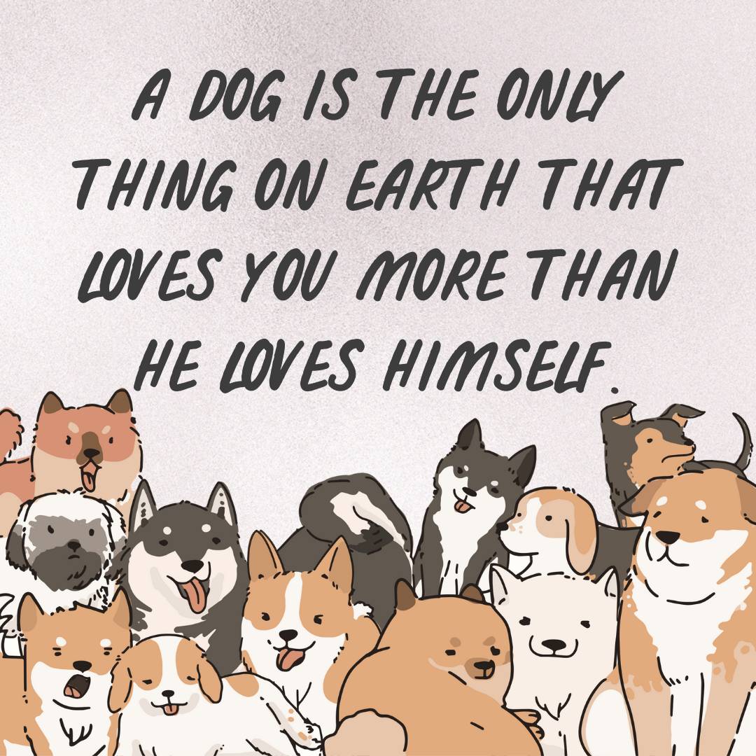 dog love.png