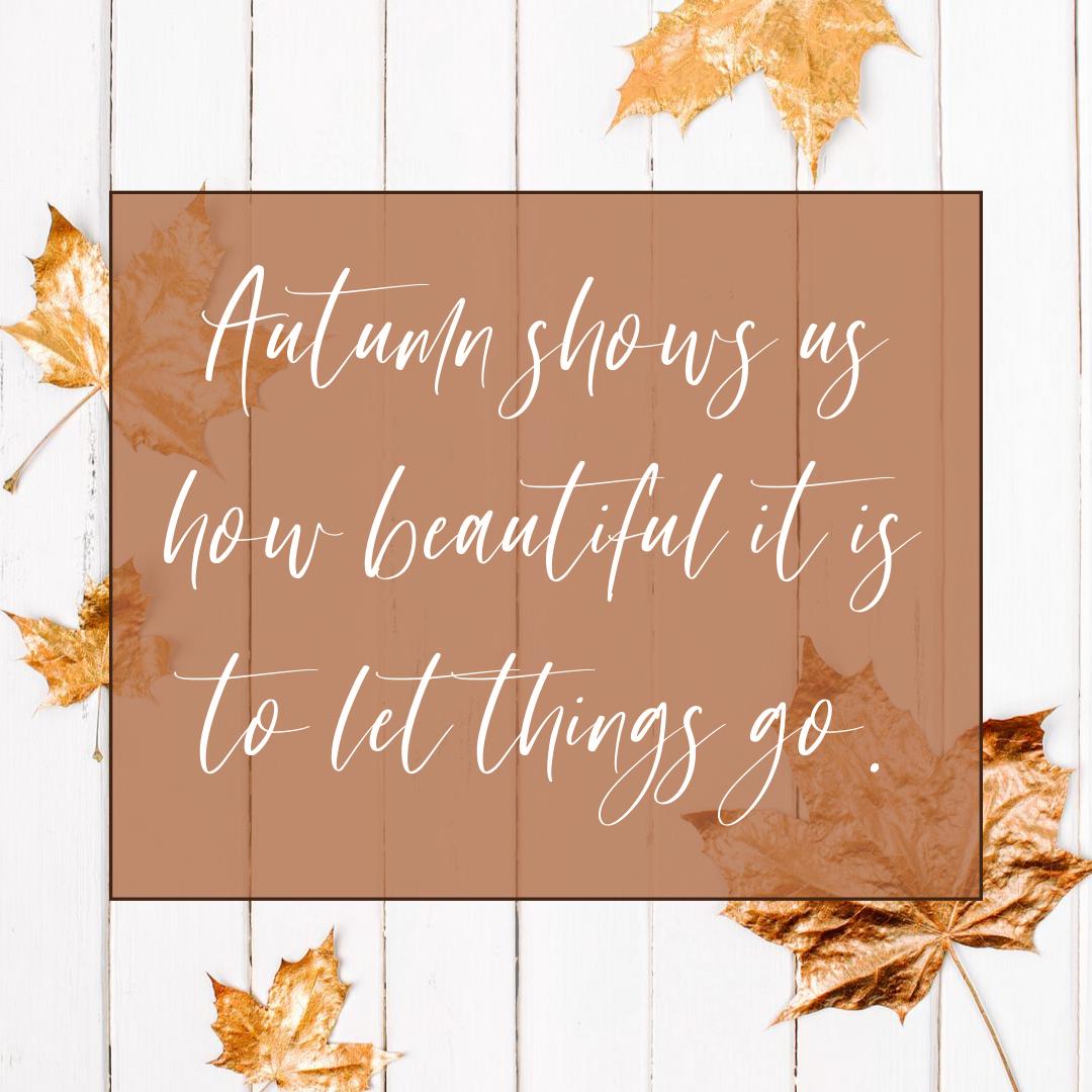 AutumnBeauty.png