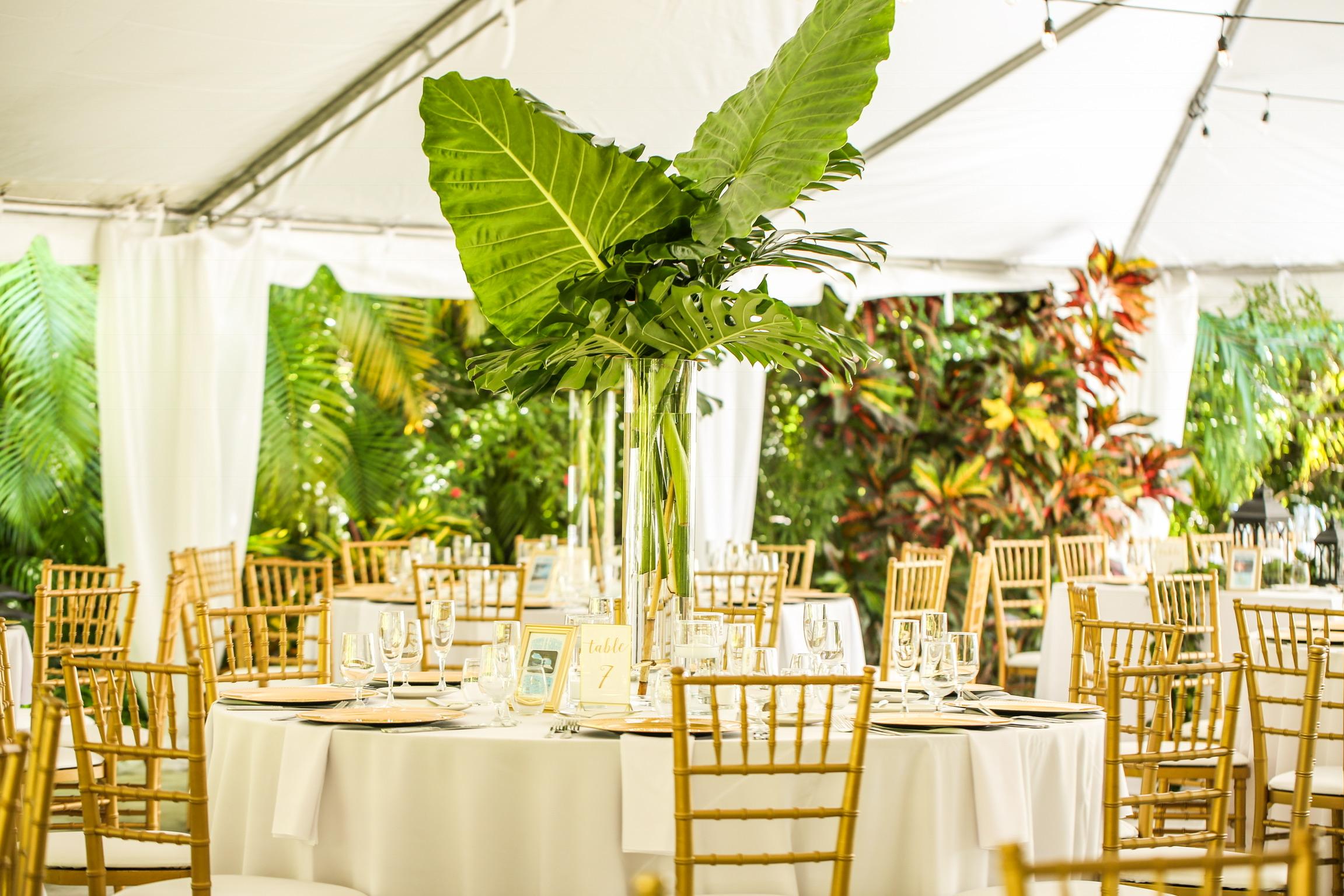 042818 Cox Wedding_0054.JPG