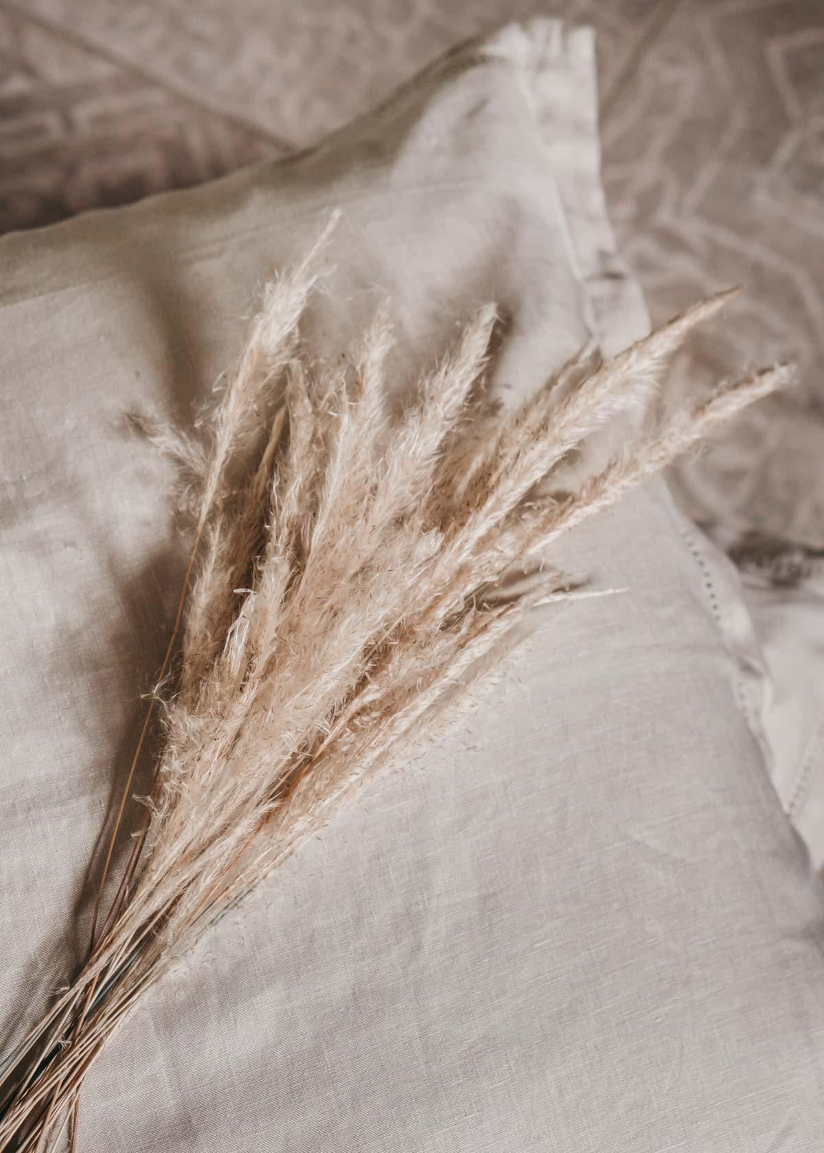 Keira-Mason-in-between-the-sheets-pampas-grass.jpg