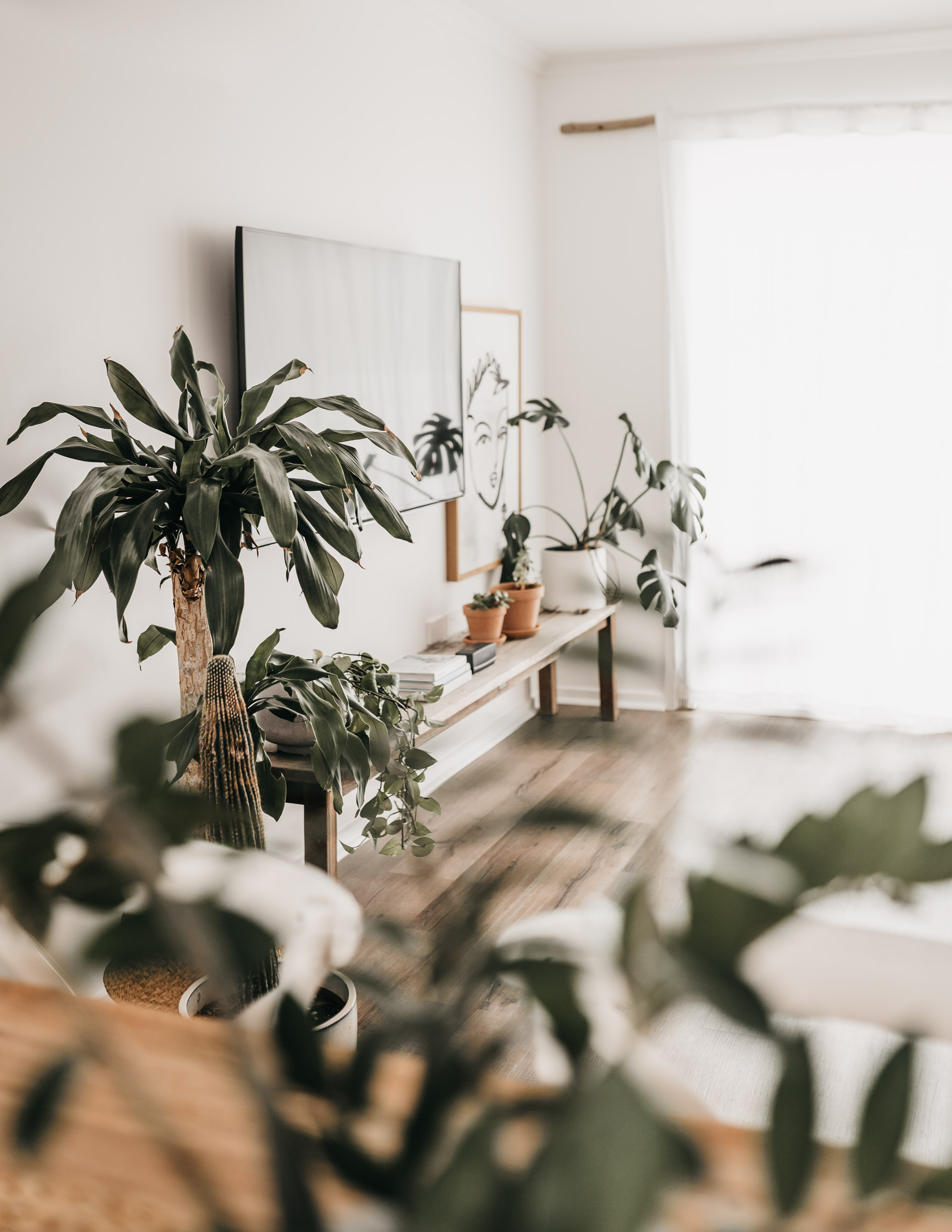 keira-mason-caba-cottage-plants-in-home.jpg