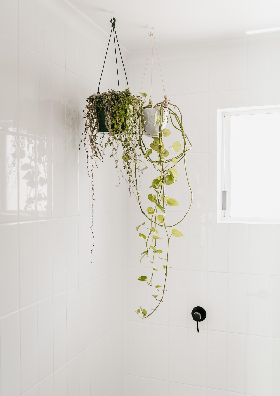 keira-mason-caba-cottage-bathroom-plants.jpg