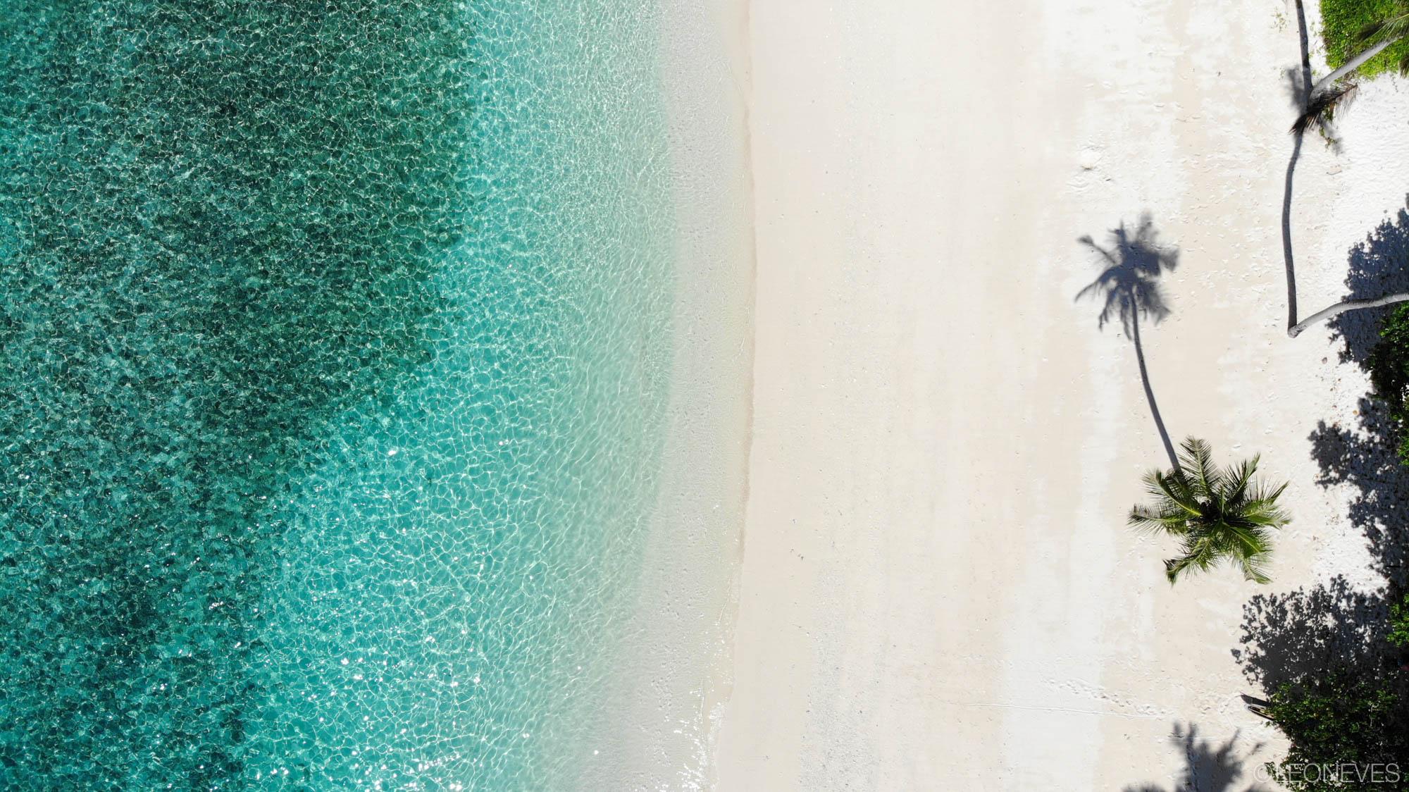 Leo Mentawai-3.jpg
