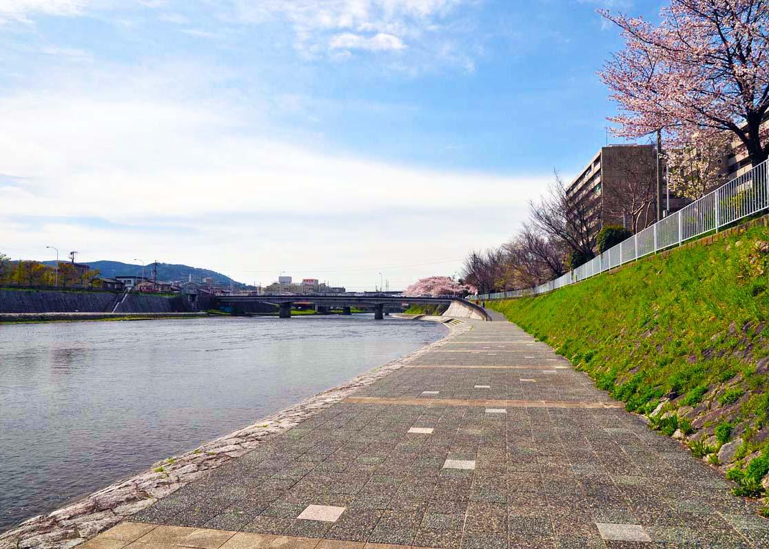 Kamogawa River -