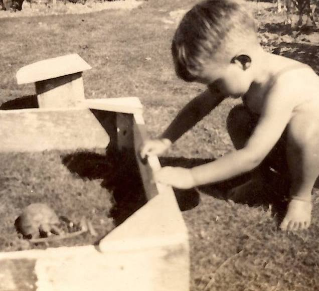 My father, Oliver Riddell, age three in 1944 with Peter the tortoise. When this photo was taken Peter had already been in the Hughes/Riddell family for 30 years, and would live for another 50 years.