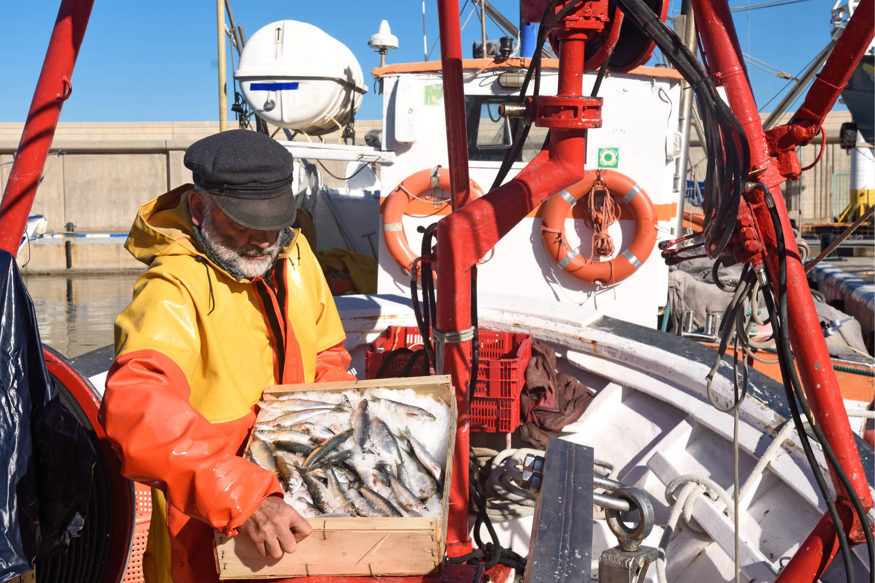 Day Boats from North Shields - Rely on the experts… our fishing fleet at North Shields, like all fishermen, know their stuff, the best fishing grounds and the best sustainable fishing methods to ensure stocks are maintained for the future.