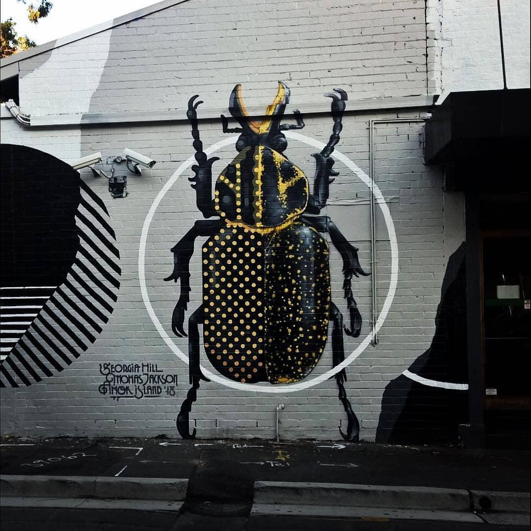 Art by Amok Island & Thomas Jackson - Australia