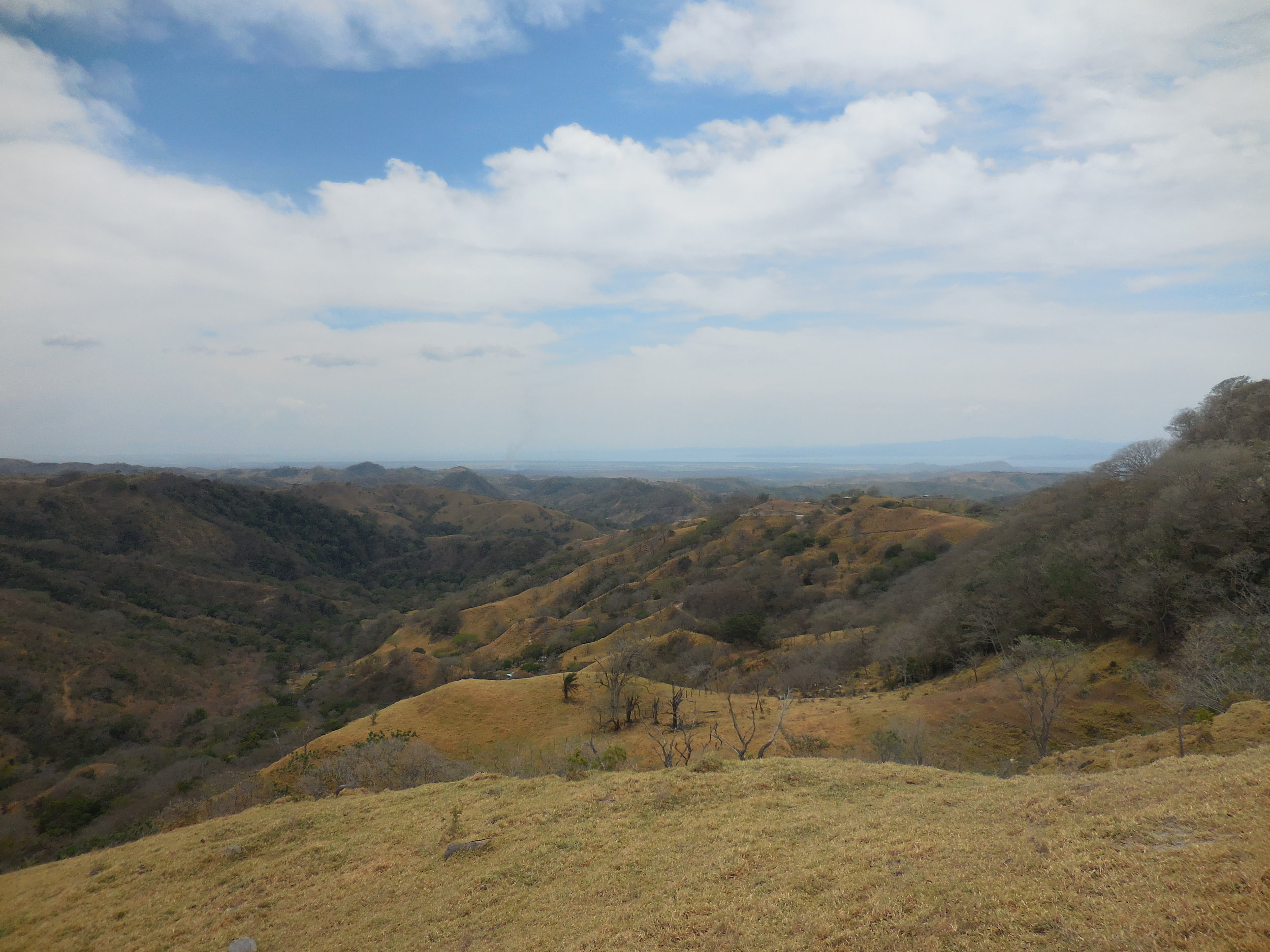 View from a mountain close to Monte Verde