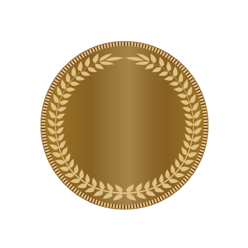 bronse medalje.png