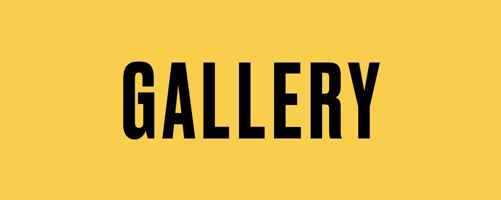 Mike-Gallery-v1.jpg