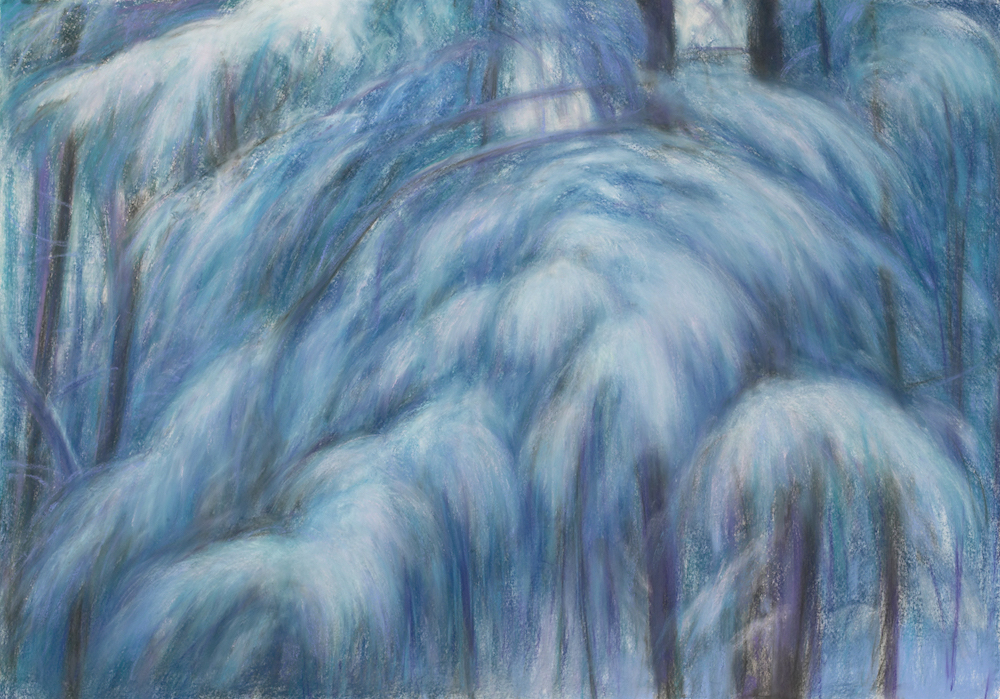 Glendale Pine Boughs (Winter Afternoon), Pastel, 35 1/4 x 50 1/2""