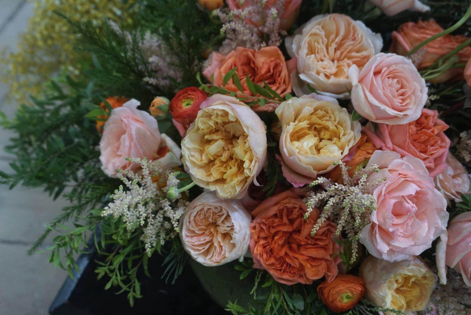 Kunming International Flower Show, China with  Tambuzi