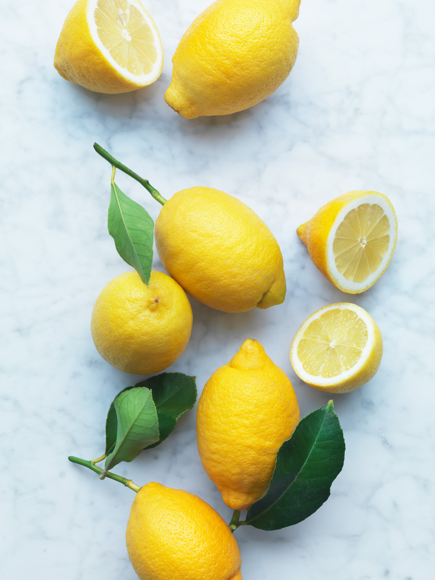 Waitrose_Bestcustomer_Lemons_21.2.18 - 687.jpg