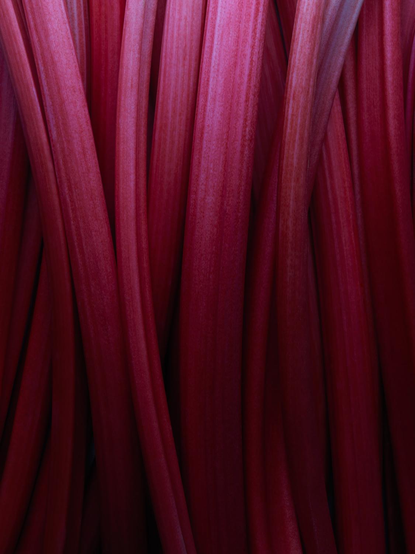 HarrodsMag_Rhubarb_24.11.16 - 014.jpg