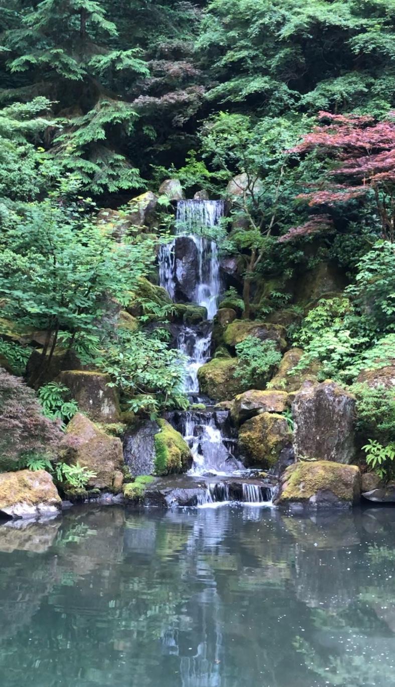 japanesewaterfall.jpg