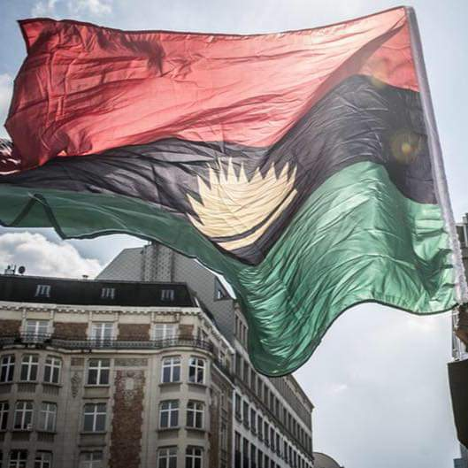 Flying Biafra Flag.jpg