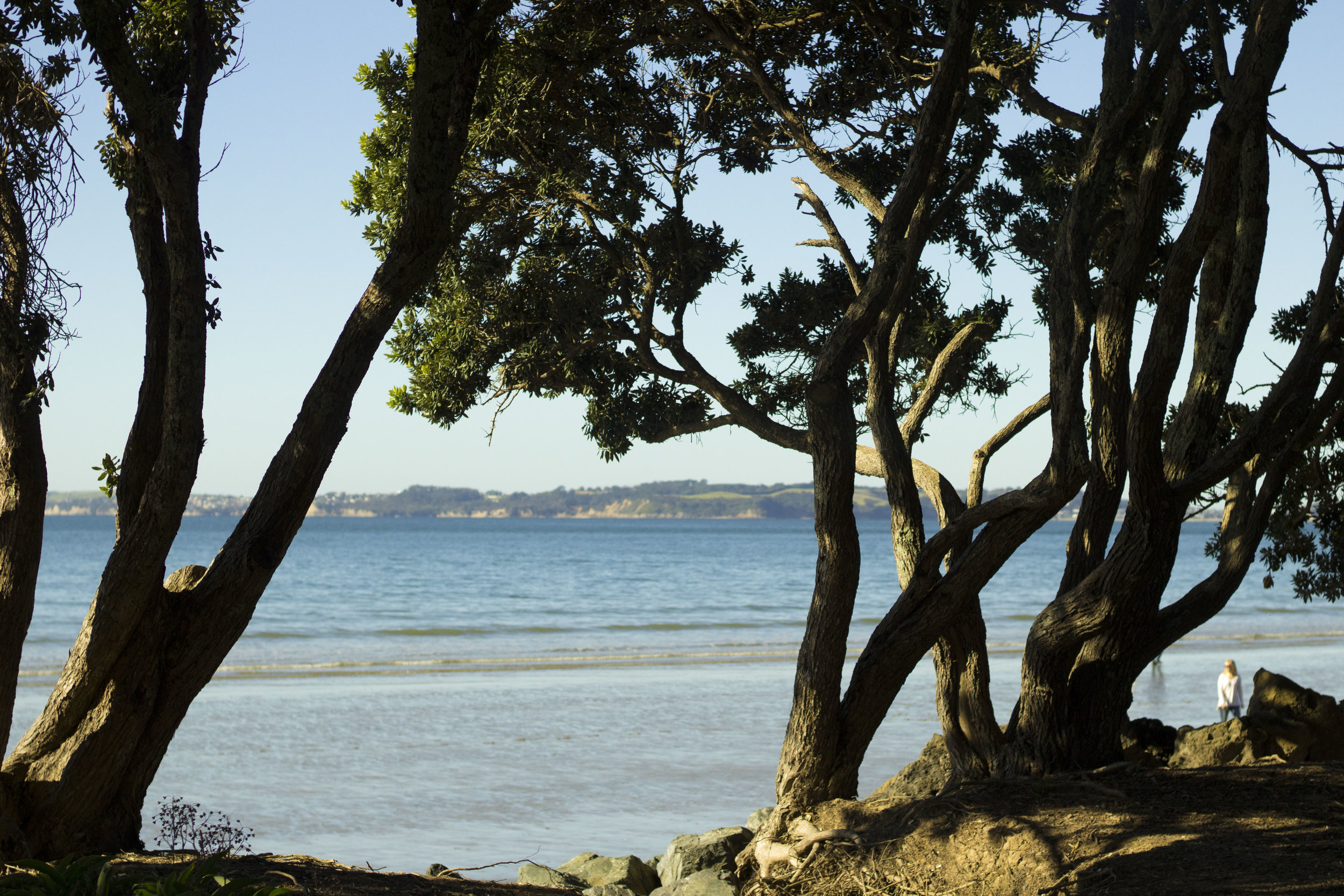 blog Orewa Beach 8.jpg