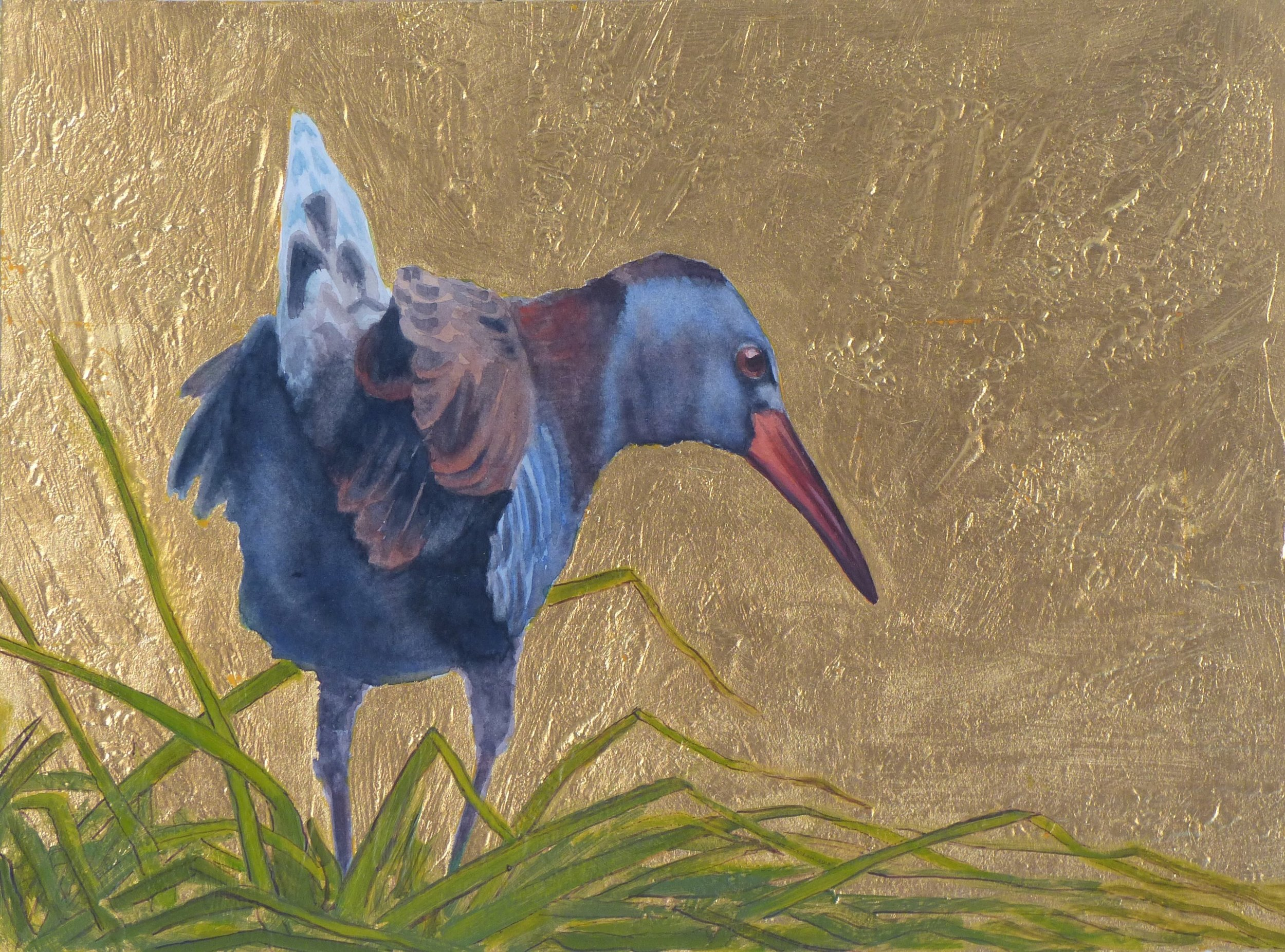 Water Rail in Gold -  Zev Labinger