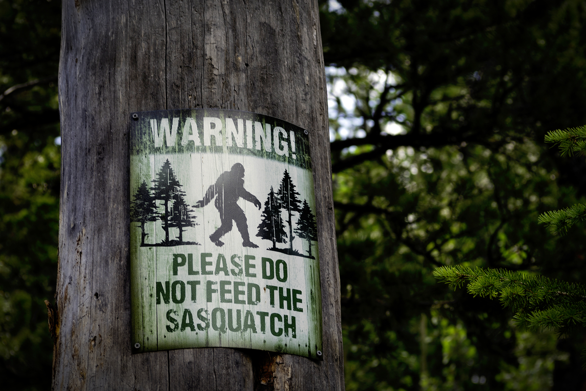 Bigfoot_Discovery_Center_By_Sharon_Keating_Shutterstock.jpg