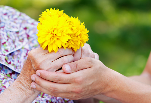 World Hospice and Palliative Care Day 2015.jpg
