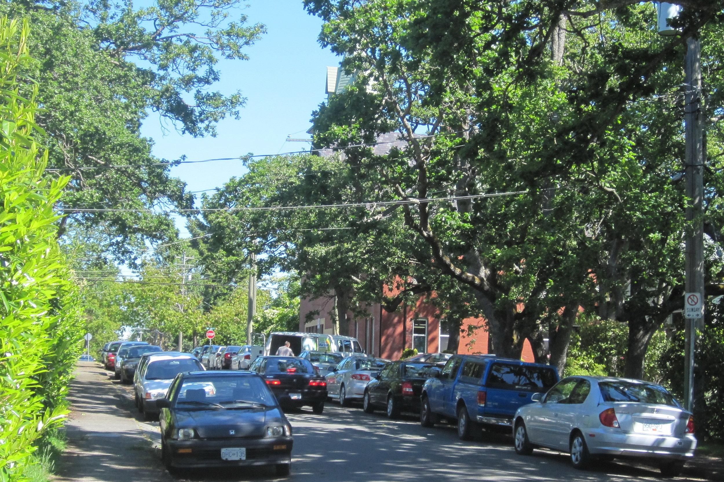 Sue Parking 1.jpg