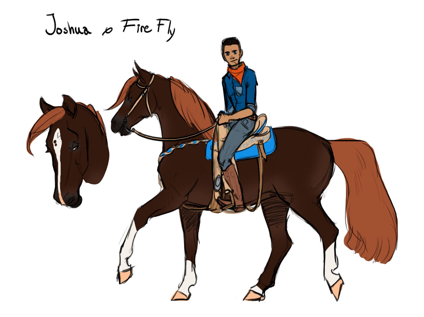Concept   Joshua with his morgan horse Firefly