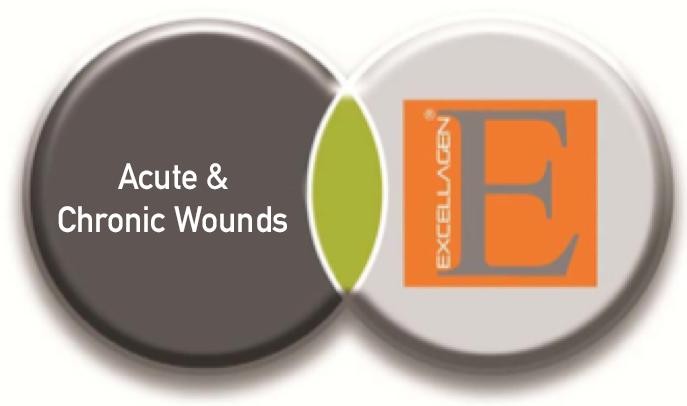 AcuteChronicWounds+logo.png