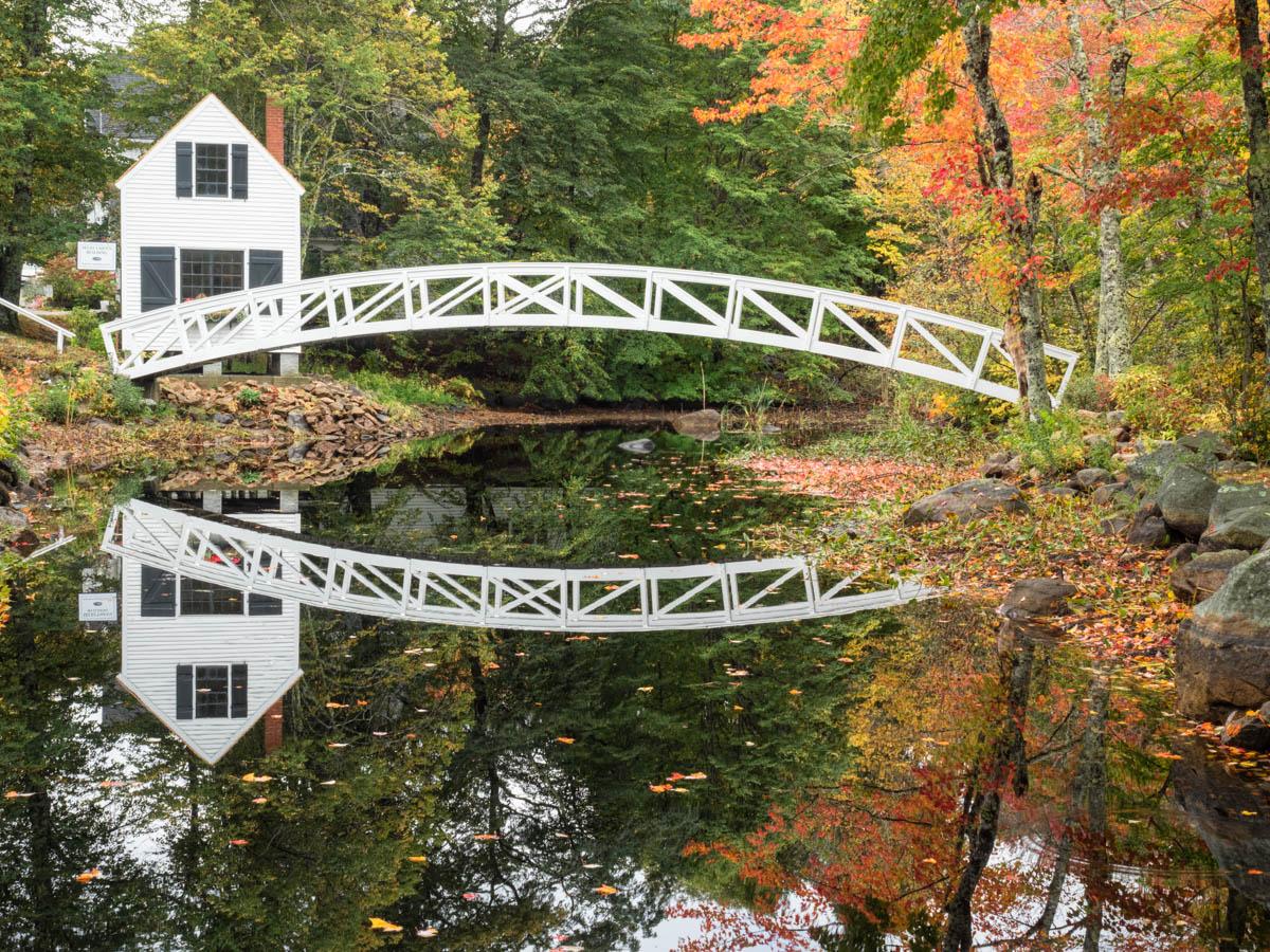Double Bridge
