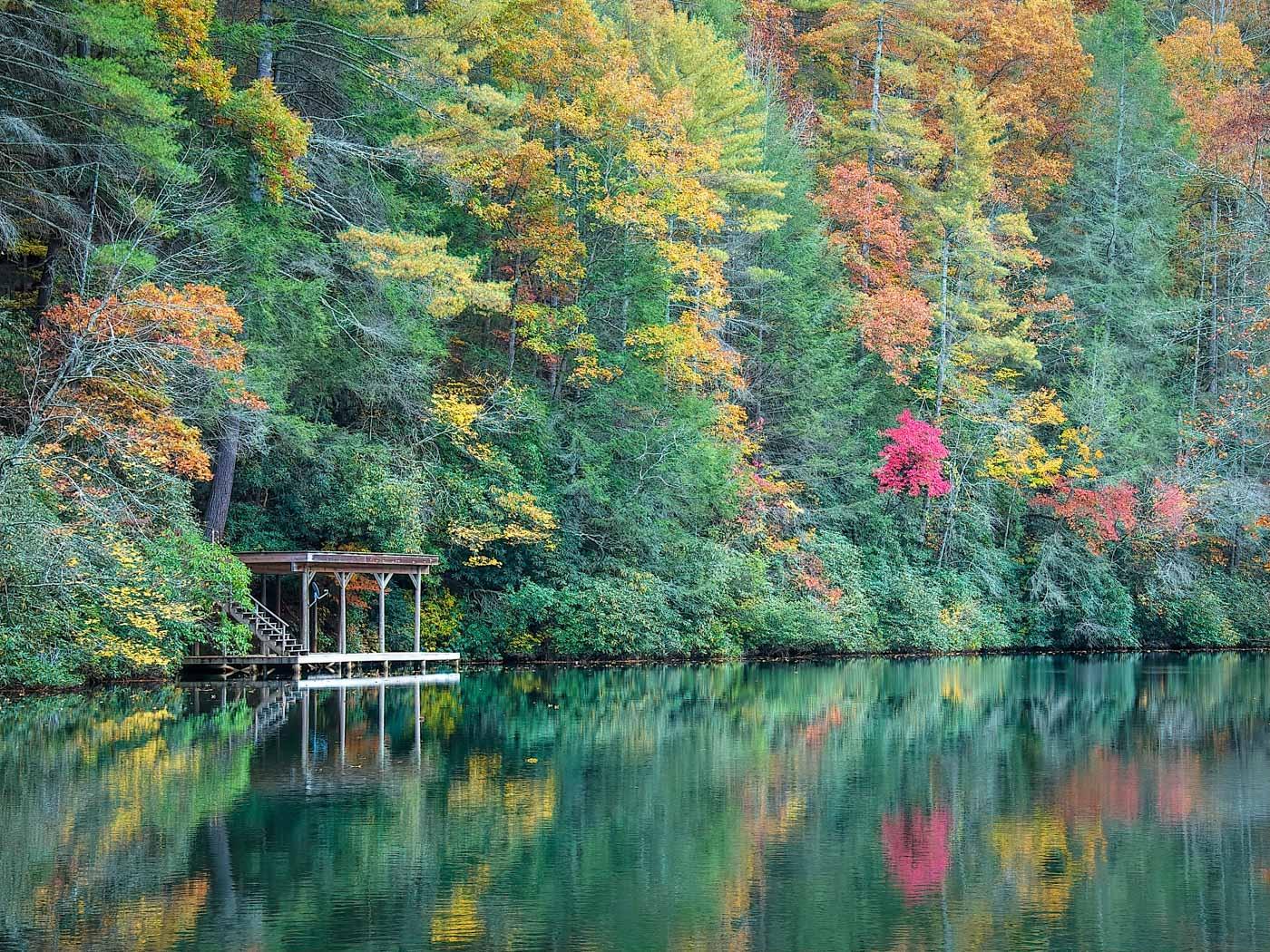 Green Reflections, Lake Seed