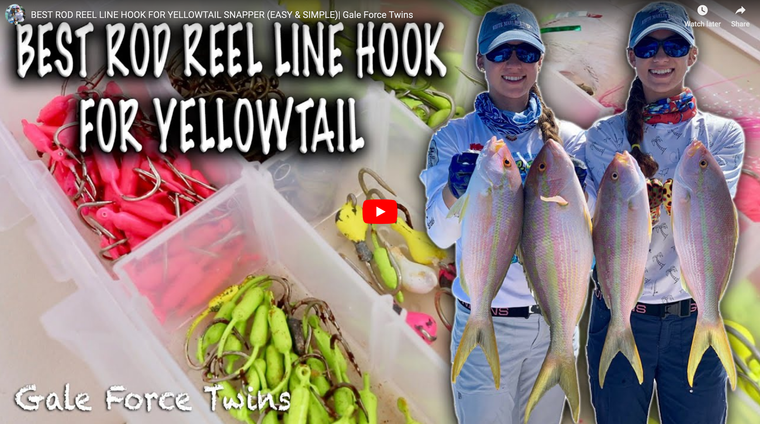 Yellowtail Rig Video.png