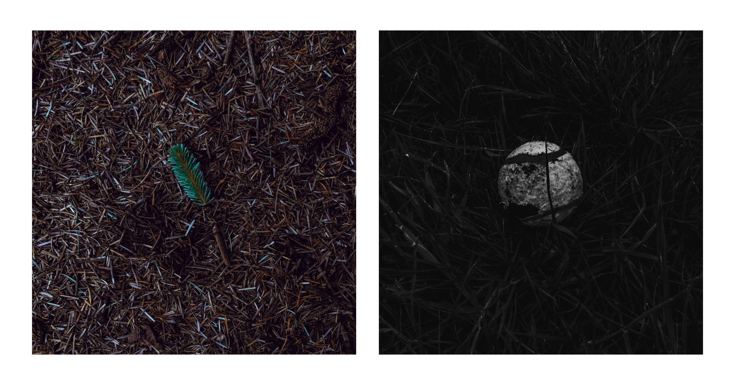 ball + leaf duo .jpg