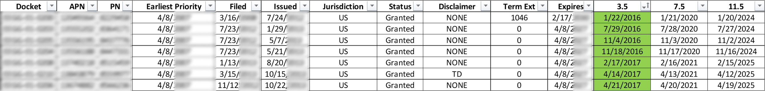 An example portion of a Term and Maintenance Fee Tracking spreadsheet (partially redacted).