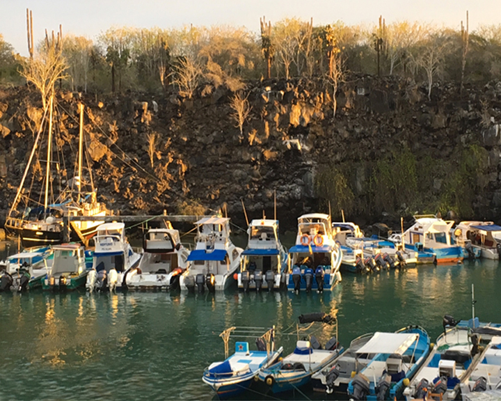 Boats and lava, Santa Cruz_edited2.jpg