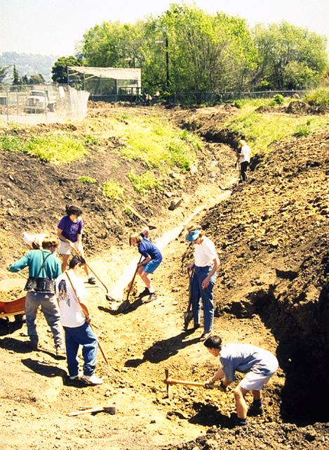 Creek restoration, Albany, California