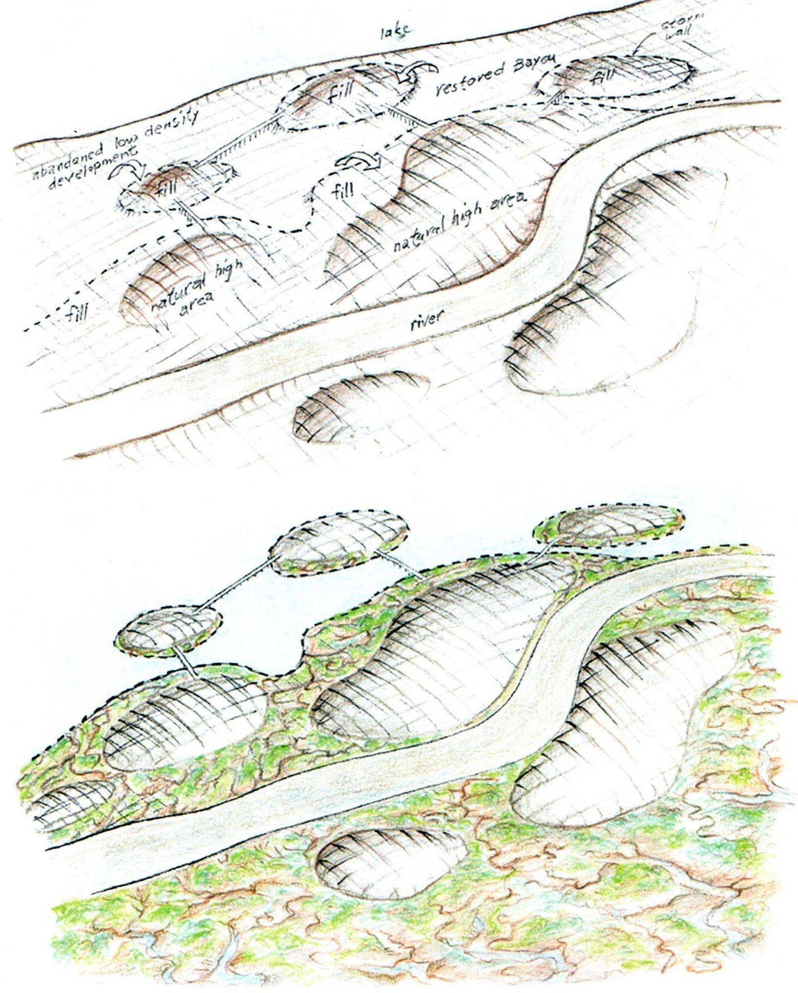 A generalized model for elevating cities and restoring natural landscapes (all drawings by Richard Register)