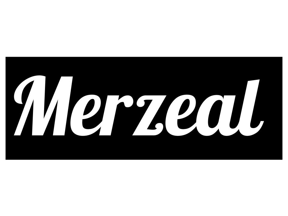 Merzeal - Creating visual design for entrepreneurs(In progress)