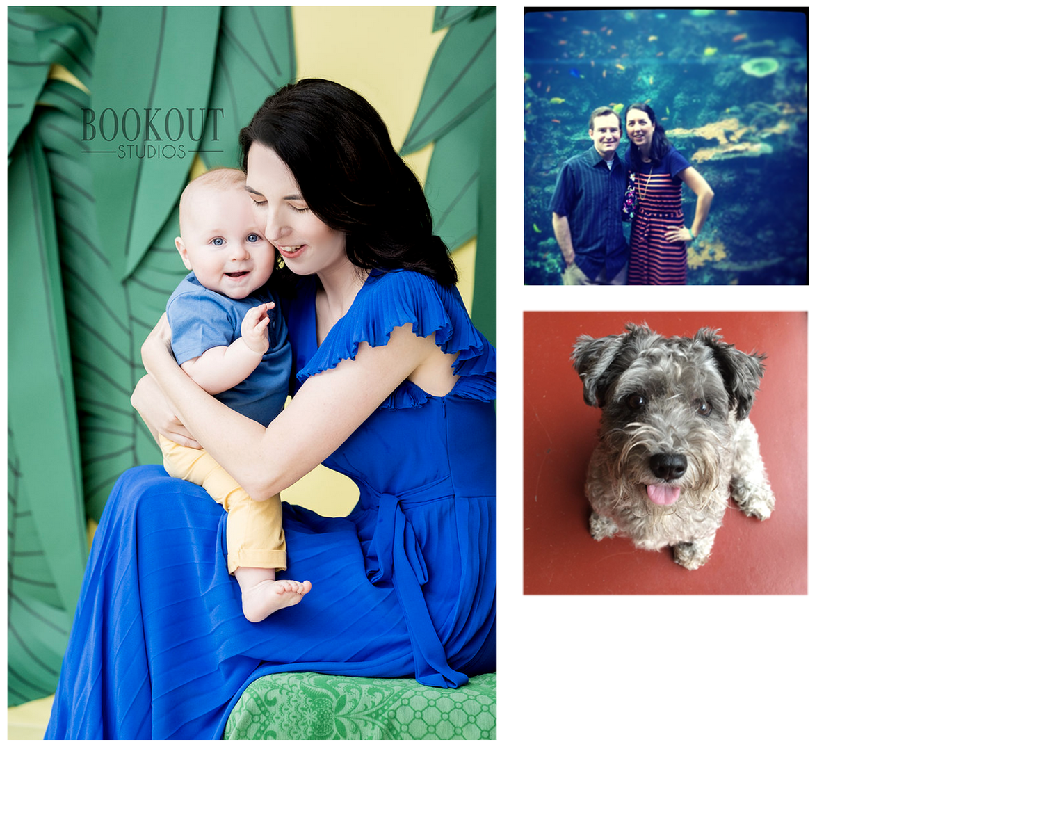 Illustrator Colleen Johnson lives in Huntsville, AL with her husband Chris, one year old son Ryland and their dog Emmy.
