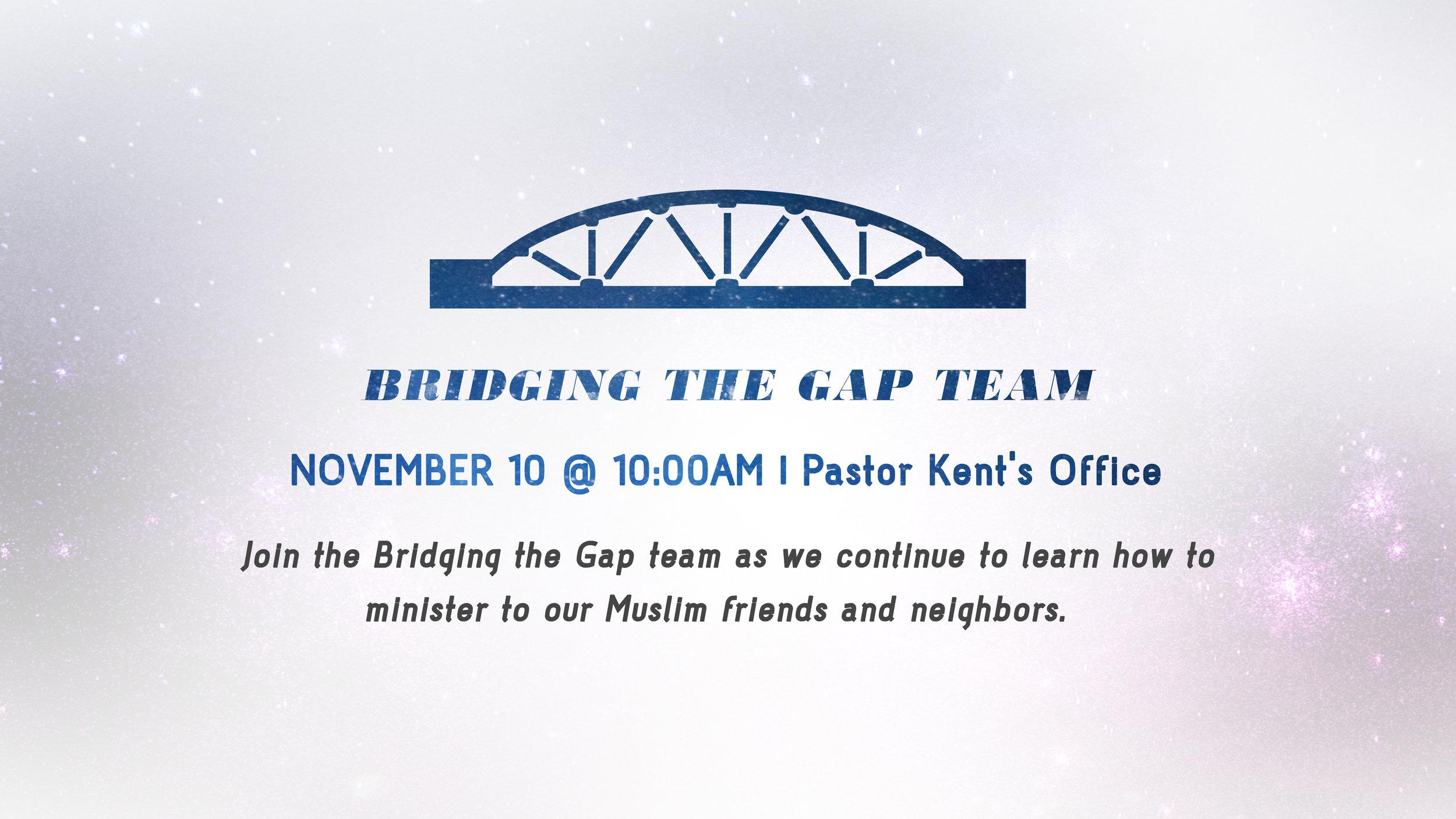 Bridging the Gap Team.jpg